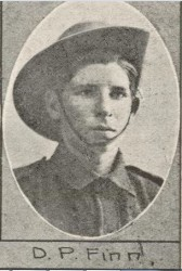 Denis Finn, The Queenslander 8 Jan 1916