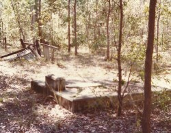 Carnegie grave late 70s